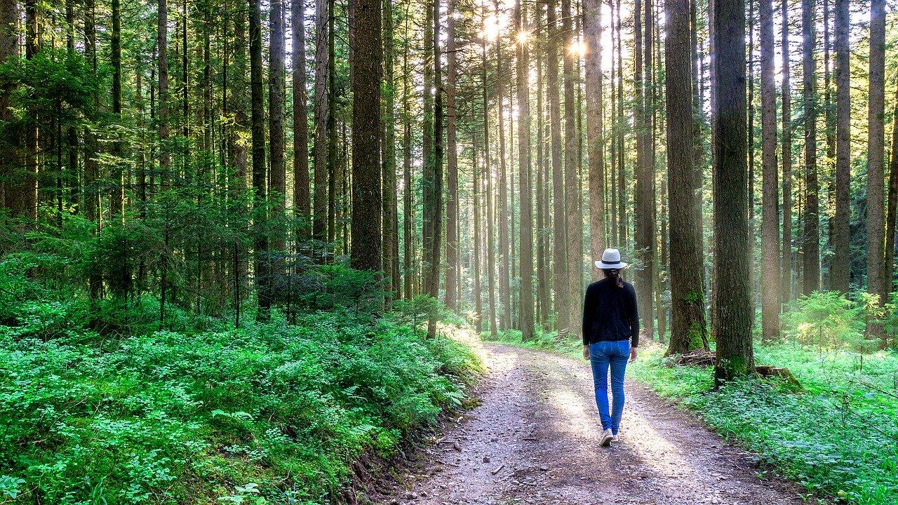 pray and walk hitbodidut