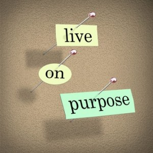 Are the Things You Do and Choices You Make On Purpose?