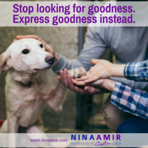Stop Searching for Goodness and Express It Instead
