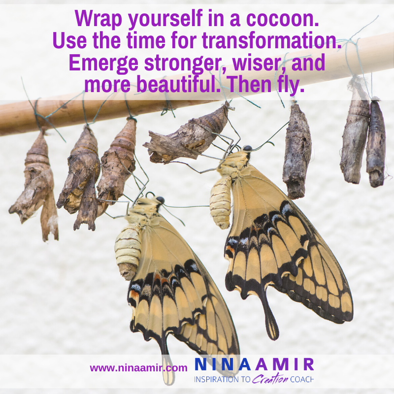 cocoon yourself while sheltered in place and emerge transformed