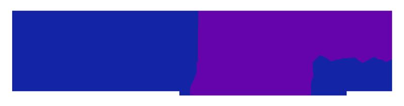 NinaAmir-logo